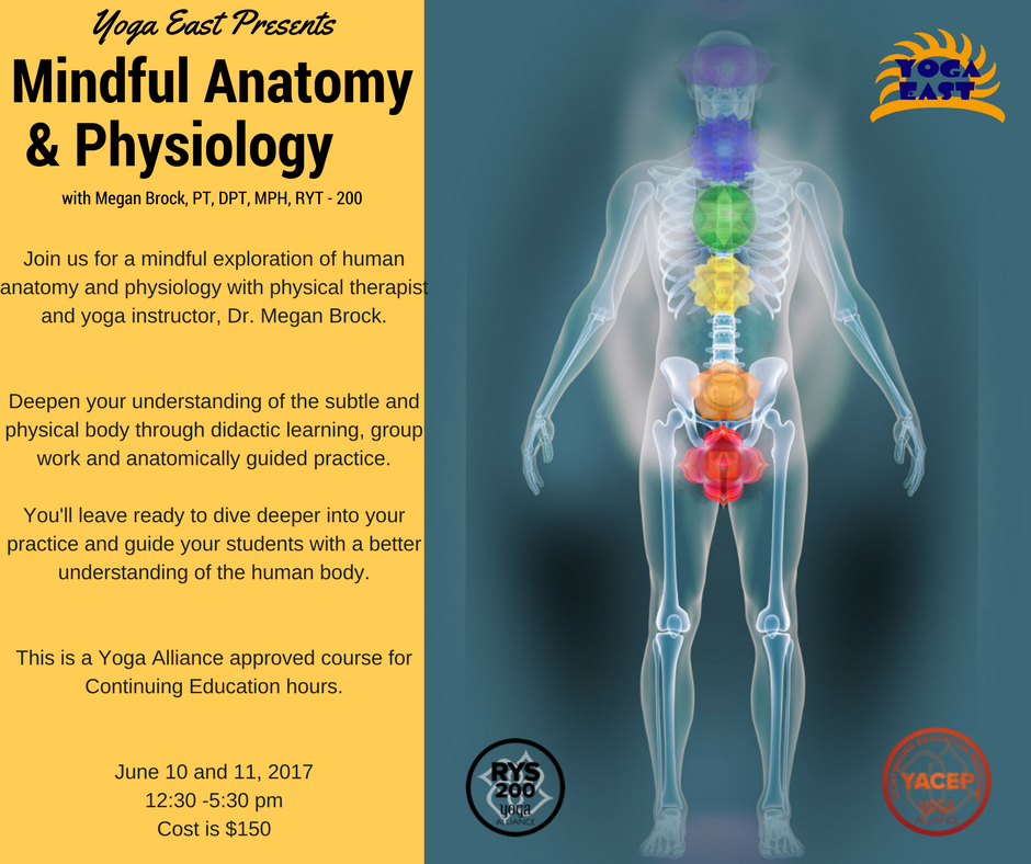 Fancy Human Anatomy Courses Online Image - Human Anatomy Images ...