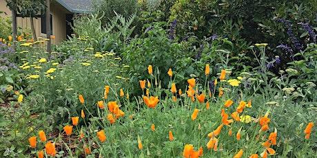 Free Virtual Tour of Love's Gardens Demonstration Garden tickets