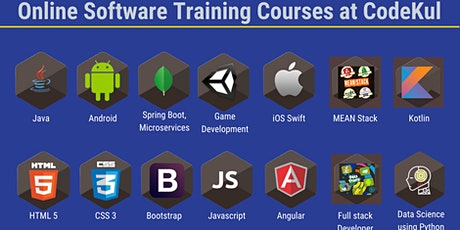 Online Software Training|Online Software Courses|Online Software Class Pune tickets