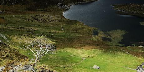 Nature of Snowdonia - Environmental workshop tickets