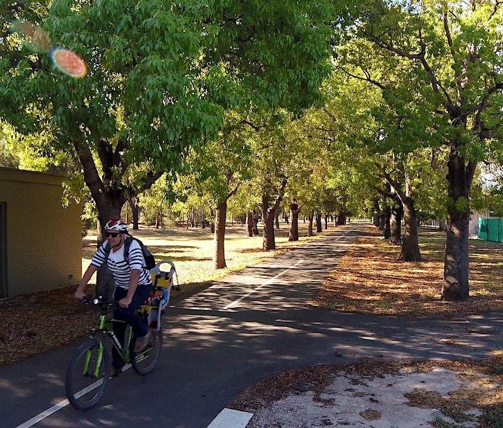 Guided Walk through Blue Gum Park / Kurangga (Park 20) image