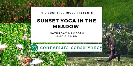 Sunset Yoga In The Meadow tickets