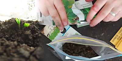 Dirtbags! Free online Kids Indoor Gardening webinar
