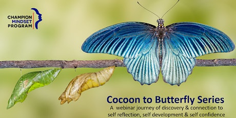 Butterfly Effect: Exploring your calm in the inevitable chaos of life tickets
