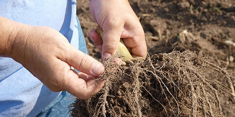 Organic Ag Academy: Organic Soils, Nutrients, and Composting tickets