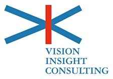 VISION INSIGHT CONSULTING SRL logo