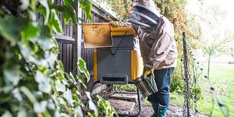 Introduction to Bee Keeping (Virtual Course via Zoom) tickets