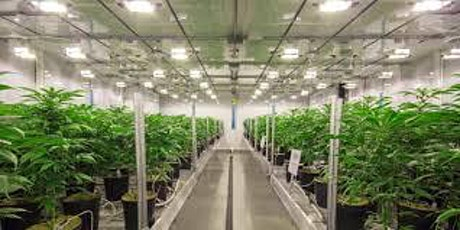 CAN002A – CANNABIS FACILITY MANAGEMENT : INTERACTIVE LIVE WEBINAR tickets