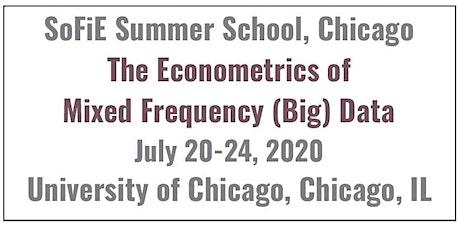 Summer School on MIxed Data Sampling (MIDAS) regression models and filtering methods tickets