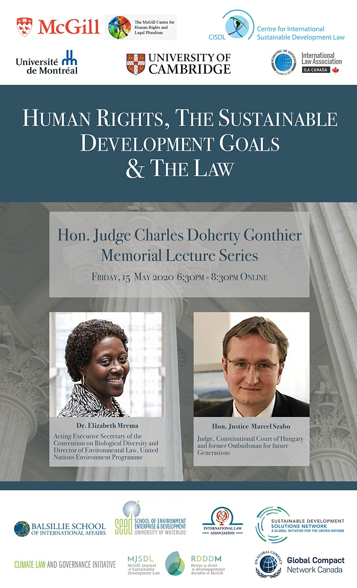 Human Rights, the Sustainable Development Goals & the Law image
