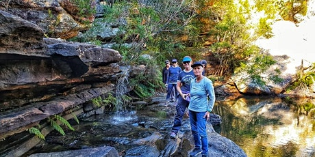 Kingfisher Pool to Mt Westmacott ~ Half Day Hike // Saturday 26th September tickets