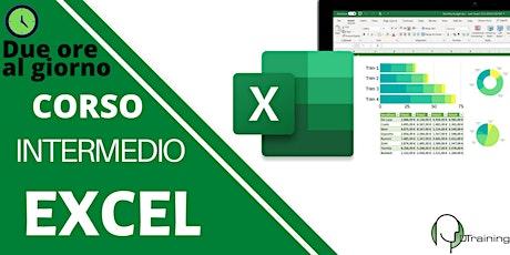 Impara Microsoft Excel guidato da un esperto: livello intermedio-2 ore al giorno biglietti