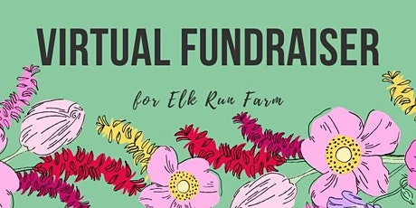 Virtual Fundraiser tickets