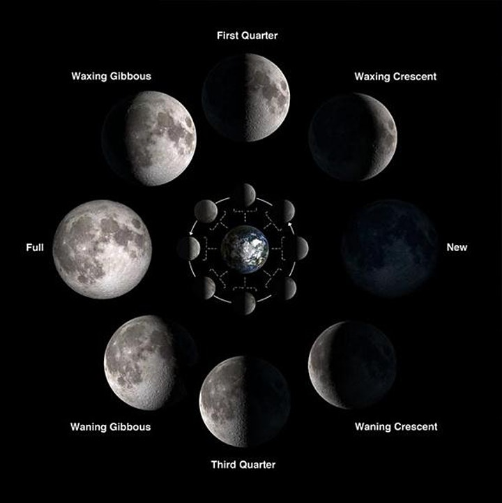 Phases of the Moon. Image from NASA.gov