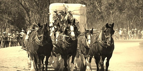 "Barellan Working Clydesdales ""Good Old Days"" Festival tickets"