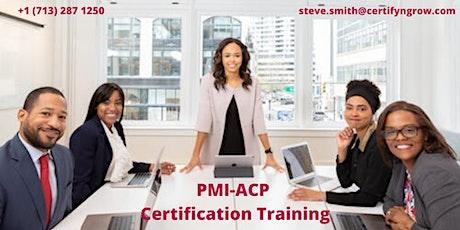 PMI-ACP 3 Days Certification Training in Las Vegas, NV,USA tickets