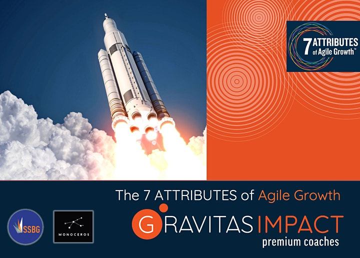 The 7Attributes of Agile Growth image