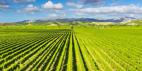 Virtual New Zealand Wines tickets