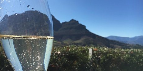 Virtual South African Wine Class tickets