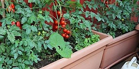 Container gardening class tickets