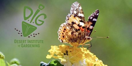 DIG Online: Pollinator Gardens That Survive Arizona Summers tickets