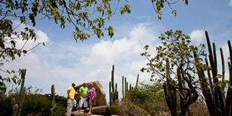 Aruba Mini Island Tour with Beach Party - Private tickets