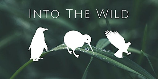 Into The Wild - Online Charity Quiz