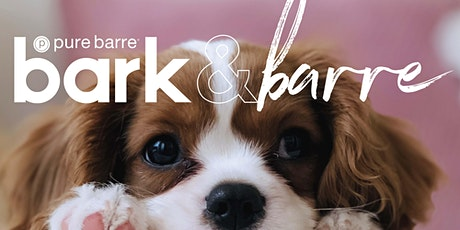 Pure Barre Culver City Fundraiser x Michelson Found Animals tickets