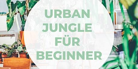 Urban Jungle für Beginner Tickets