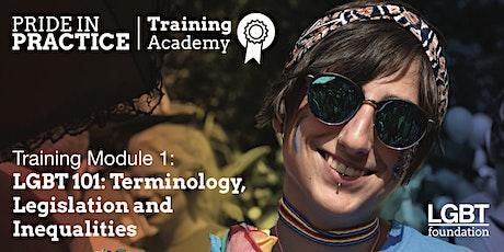 Pride in Practice Training Academy: LGBT 101: Module 1