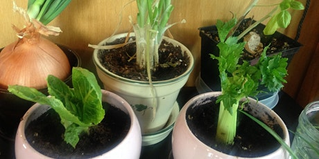 REGROW your own Vegetables from Kitchen Scraps tickets