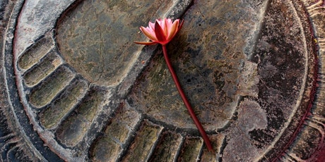 Walking in the Buddha's footsteps: the Eightfold Path 2020jun2clol tickets