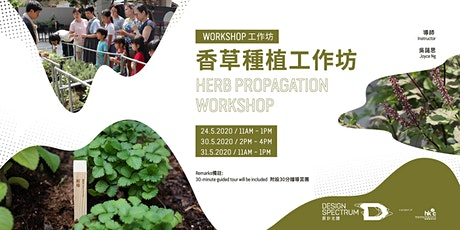 香草種植工作坊 Herb Propagation Workshop - Parents and Kids sessions 親子組 (B) tickets