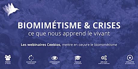 Crise et Biodiversité - Gilles Boeuf billets