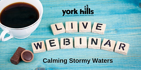 Calming Stormy Waters - How To Support Children Through Separation And Divorce tickets