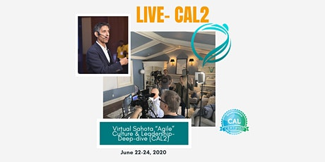 "ONLINE Live Virtual ""Agile"" Culture & Leadership - Deep-dive (CAL2) tickets"