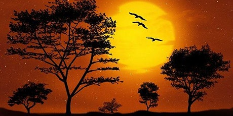 """Virtual """"Paint A Sunset""""  At Home W Supplies included! Sat May 30 tickets"""