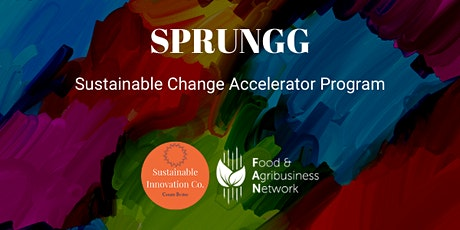 SPRUNGG Sustainable Change Accelerator Program tickets