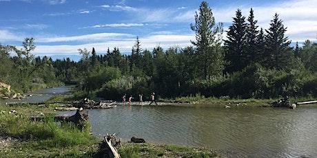 Pick Up the Park - Fish Creek Provincial Park tickets