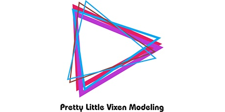 Pretty Little Vixen Business Development and Networking Event tickets