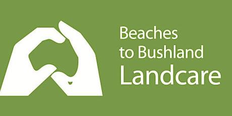 Tarrabora Bushcare Group- Tree planting tickets