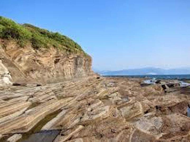 Tung Ping Chau Nature Excursion image