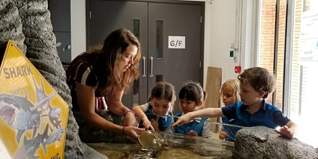 Hatchling Marine Biologists (13 July - 17 July) tickets