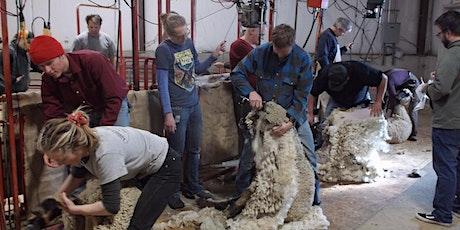 USU Sheep Shearing School 2021 tickets