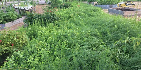 UN World Environment Day: The NYC EcoFlora Project and Community Gardens tickets