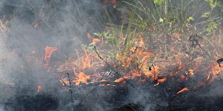 Wild Sarasota: Prescribed Fire (webinar) tickets