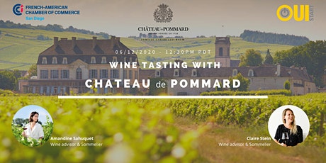 Wine Tasting with Chateau Pommard, Burgundy tickets