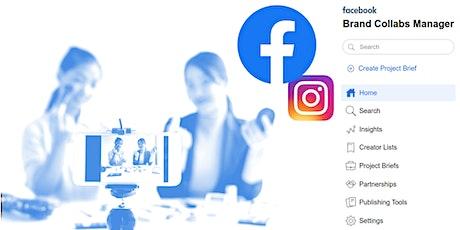 Branded Collabs - Auditoría de Influencers en FB y IG entradas