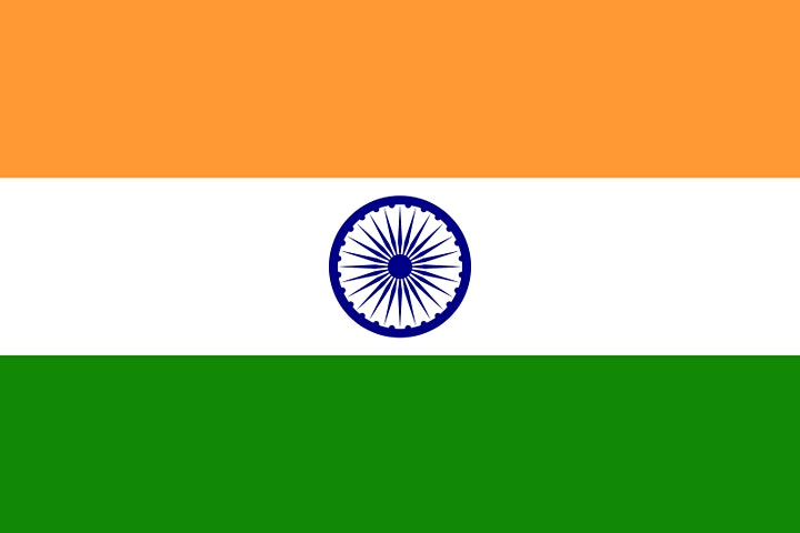 India Adoption Program Information Session via Zoom image