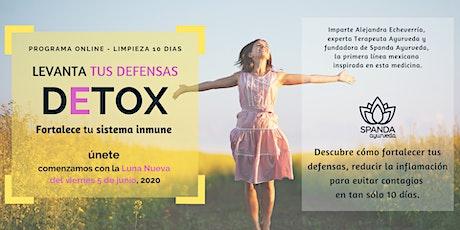 Detox  -  Fortalece tu sistema inmune - 5 junio entradas